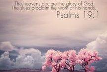 Bible Study:  OT Psalms