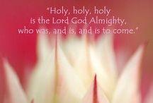 Bible Study:  NT Revelation / by Kim