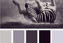 Be Inspired: Black