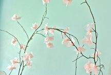 F l o w e r s [DIY] / Made from tissue paper or other sources / by ZAMS Photography