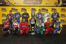 2012 Chase for the Sprint Cup / The Chase for the Sprint Cup is set and 12 drivers have a shot at bringing home the championship title in 2012. Lionel NASCAR Collectables is proud to offer the die-cast cars of each driver in the Chase and will be rolling out special championship die-cast once the sport's new king is crowned!