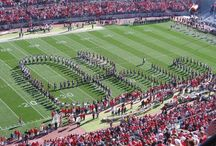 Buckeyes / The Ohio State University  / by Jann K