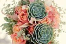 icantbelieveihaveoneofthese Wedding Board / Wedding plans....... Yowza / by Kelley Wardell