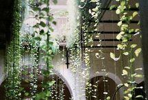 Nature's grand design / Bringing outdoors indoors