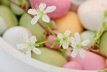 Easter/Velikonoce