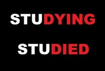 Studying? / How the life of a student works