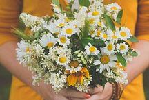 Flowers  / by Scarlett R
