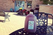 Minnetrista Apple Cider / Apples and cider are a part of a long tradition at Minnetrista! Read more about it on our blog: http://www.minnetrista.net/blog/2014/11/26/ball-family-history/the-orchard-shop-at-minnetrista / by Minnetrista