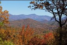 It's Fall, Y'all! / Fall in Georgia is a beautiful time. Check out this board for great Fall activity ideas. / by Explore Georgia