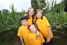 Corn Mazes / Get lost in a Georgia corn maze!