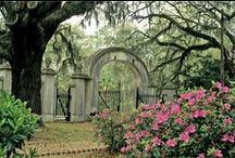 Georgia Historic Sites / Visit one Georgia's beautiful historic sites today to discover secrets & stories from Georgia's past! / by Explore Georgia