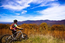 Play in the Dirt in Georgia! / Get down in that red Georgia clay with these muddy adventures! / by Explore Georgia