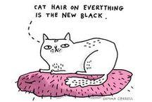 La vida es mejor con gatos / ...y algunos chuchos