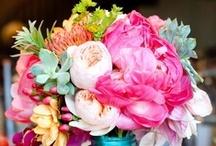 ~ Floral ~ / by Hazel popopo♥