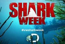 VW Shark Week / by Volkswagen USA