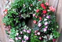 2012 Living Wreath Contest