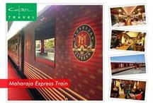 Luxury Trains India / India Luxury Train travel has become extremely popular among tourists who wish to explore India amidst luxury and comfort on famous Indian Luxury Trains. Travel in Luxury and Style with Luxury Trains of India. To know more information log on to http://www.luxurytrainsindia.org/