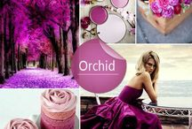 Radiant Orchid Wedding  / by The American Wedding