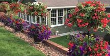 2017 Side Planting Photo Contest Winners / Pamela Crawford Side Planting Photo Contest from Kinsman Garden.  Get inspired for you chance in 2018. https://www.kinsmangarden.com/category/Side-Planting-Containers