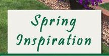 Spring Inspiration / Spring time, and life is alive in everything