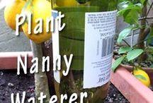 Thirsty Plants?