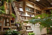 Apothecary shop or Deli / by Celia Goddard