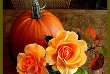 Fall ideas / by Janet Lukaskiewicz Cutting