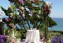 Weddings By The Velvet Garden