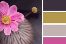 Color to Inspire/ Color Schemes