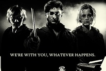 'Arry Potter.