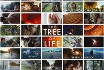 THE TREE OF LIFE / by Fox Searchlight