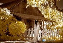 Fine Art Photography using IR (Infrared) Camera