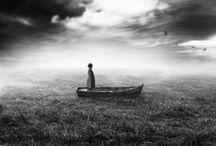 Curiouser Still / by Lisa Bradbury
