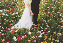Wedding <3 / by Morgan O'Hara