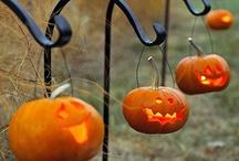 Halloween! / by Erin Chadwick