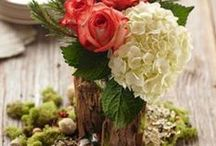 Wedding / Related to: https://www.pinterest.com/anikoper/flowers-and-colours/