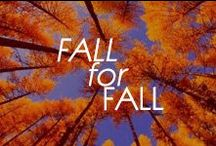 Fall for Fall / all things beautiful from our favorite season! <3 Fall...