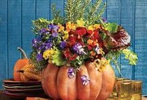 Fall Decor / Perfect decorations for the autumn months