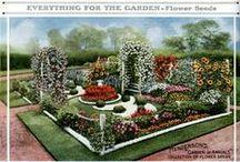 Outdoor Spaces: Plants & Plans