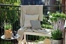 ..::Mój Ogródek // My Garden::.. / Pomysły na balkon i sadzenie w donicach i skrzynkach