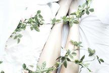 dc | poison ivy