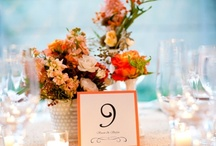 Coral Wedding Colors / Ideas and inspiration for using the color coral in your wedding color scheme. {www.weddingcolors.net}
