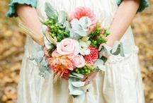 Aqua Wedding Colors   / Inspiration and ideas for using the color aqua in your wedding color scheme. {www.weddingcolors.net}
