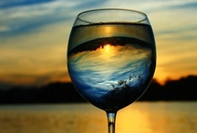 """Wine / """"Wine is the answer, but I can't remember the question"""" / by Lise Plante Hubbard"""