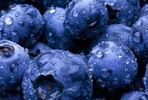 """Blueberries / Blueberries are perennial flowering plants with indigo-colored berries from the section Cyanococcus within the genus Vaccinium (a genus that also includes cranberries and bilberries). Species in the section Cyanococcus are the most common fruits sold as """"blueberries"""" and are native to North America (commercially cultivated highbush blueberries were not introduced into Europe until the 1930s). / by Lise Plante Hubbard"""