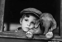 1920s Animal Mania