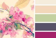 Color palettes  / by Diana Deli