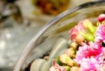 Planting Flowers & Plants / Pre-lite Stems Kirklands / by Liz Kiernan Reardon