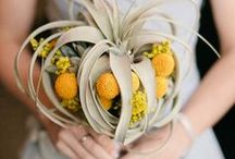 Bouquets to LOVE