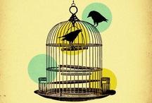 Birds / by Diana Deli